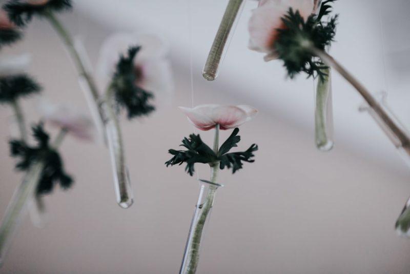 Décoration florale moderne et glamour-Delphine Closse photographe