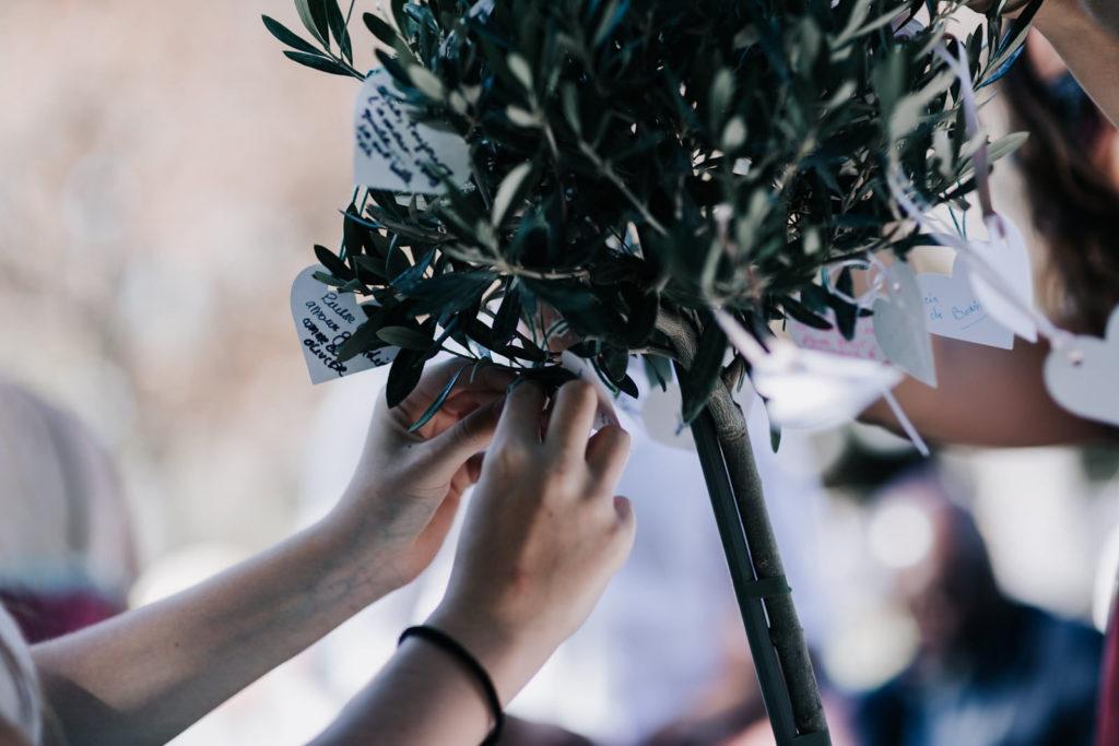 cérémonie laïque en 7 points- rituel de l'olivier-Blog photographe de mariage Delphine Closse